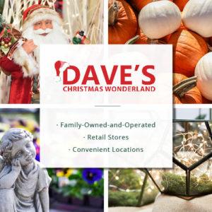 Dave's Christmas Wonderland